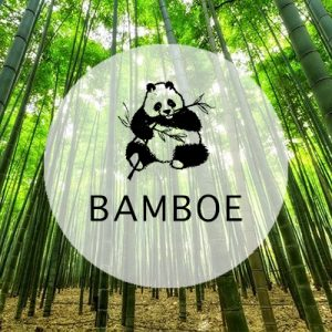 Bamboe fotolijsten